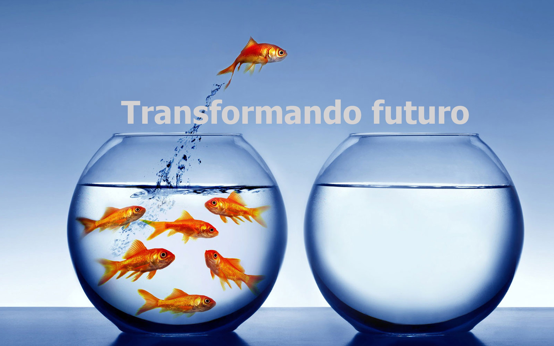 transformandofuturo1